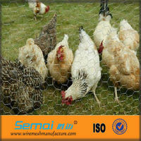 cheap galvanized decorative hexagonal chicken coop wire mesh for sale (ISO9001)