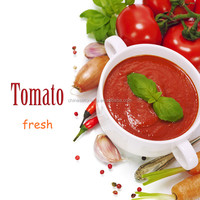 best tomato ketchup with red chilli