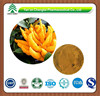 100% Natural Finger Citron Extract Professional Manufacturer