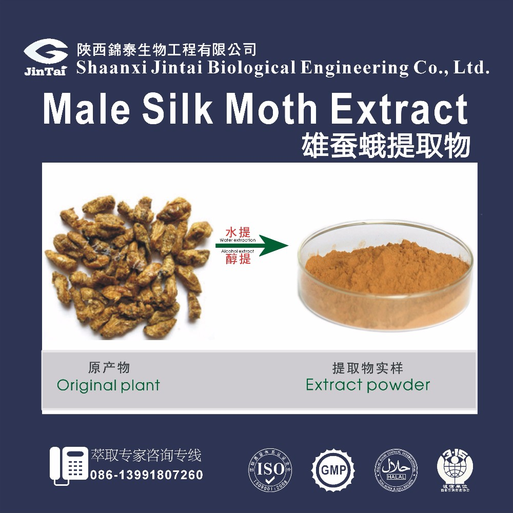 Top Quality Natural Bombyx Mori Extract Powder