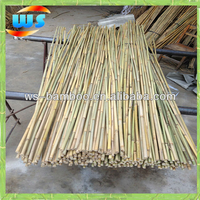 Agriculture Products/Farm Products/Bamboo