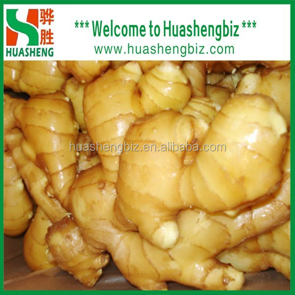 Hot Sale Fresh Yellow Ginger