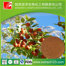 Factory Supply High Quality Wild Jujube Extract/Total Saponins 2%/Semen Ziziphi
