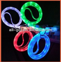2013 Hot Selling Newest Visible LED USB Cable for Phone 5 5s 5c Pod Pad mp3 mini charger 4 Colors