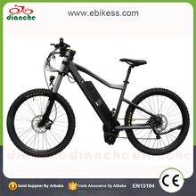 500 Watt 1000W Electric Bicycle E Bike with Pedal Assistance