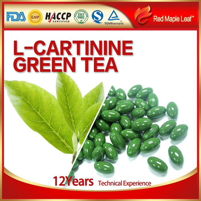 OEM Organic Green Tea Extract Weight Loss Softgel Capsule