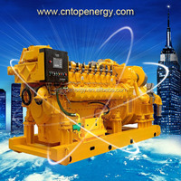 High Efficiency 300kw Biogas Generator Set Adopt Biomass, Methane, CH4, Marsh Gas, LPG