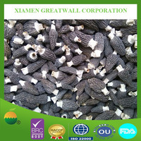 Good price of dried black morel mushroom in hot sale