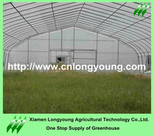 Arch Tunnel Growing Hot House Greenhouses