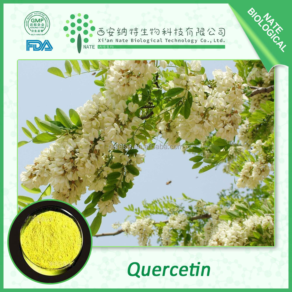 Hot sale Pharmaceutical grade Organic Quercetin 98% CAS NO: 117-39-5
