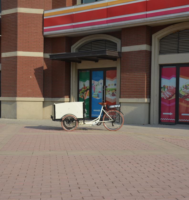Competitive Price Chinese Electric Bike For Cargo Front Load Heavy Loading