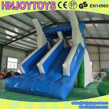 Dolphin slide, giant inflatable water slide for kids and adults