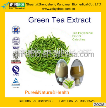 GMP manufacturer supply high quality Green Tea Extraction Polyphenols Powder 50%-98%/EGCG/Gallate