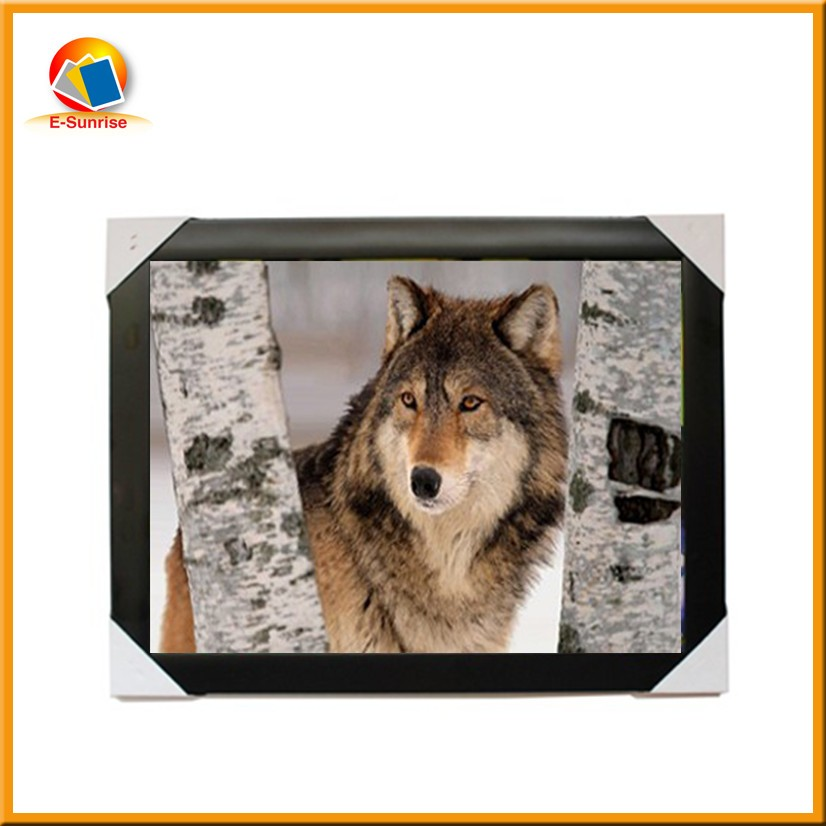 3d PP / PET lenticular material art picture 3d photo with frame