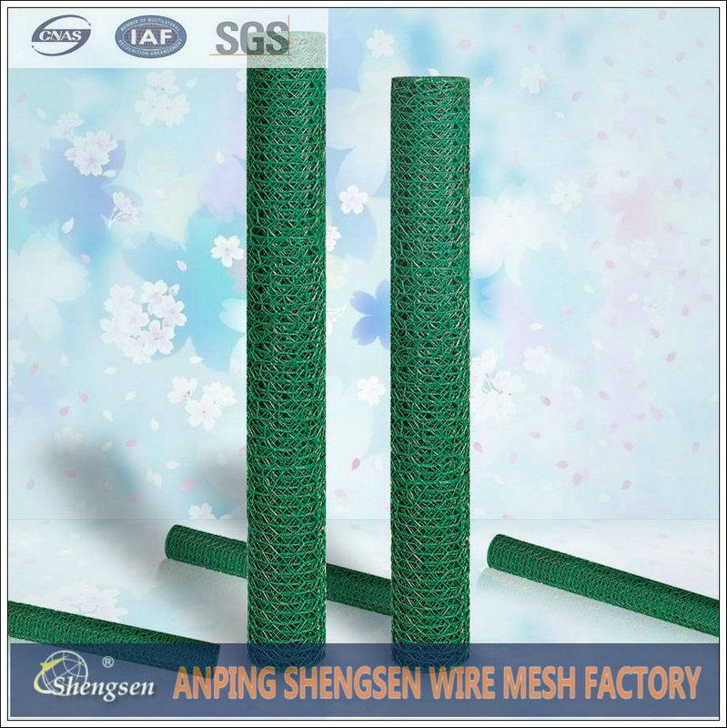 anping factory chicken wire mesh/ dog cages