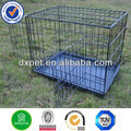 2 Door Wire Dog Crate DXW003