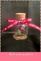 YZ DaSheng high borosilicate glass wishing bottle with cork cap and ribbon bow