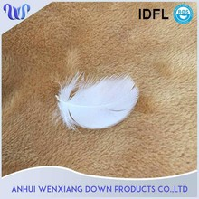 2-4cm Washed White Duck Feather filling boa