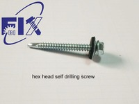 screw with washer 5.5*50
