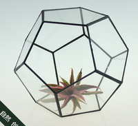 black Dodecahedron Large Geometric Glass Terrarium geometric glass plant terrarium