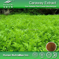 Free sample Celery stalk extract/Apigenin powder/Celery seed extract Plant extract