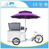 battery electric ice cream van for sale