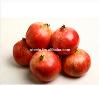 High quality Seedless Pomegranates from Tunisia