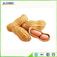 Naturally dried raw peanuts bulk for sale, direct factory