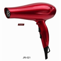Fashion no noise salon professional steam hair dryer