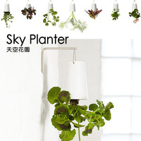 Home Amp Garden Decorative Sky Planter