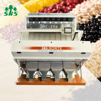 China Agriculture Machine CCD Peanut Sorting Machine Shelling Peanut Color Sorter Equipment in Anhui