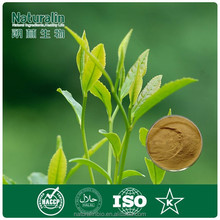 Various types of matcha green tea powder/ matcha wholesale