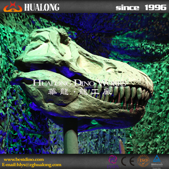 Theme Museum Attractive Fiberglass Animal Skull Replica