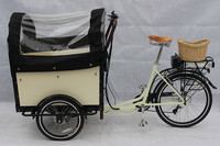 battery operated electric three wheeler