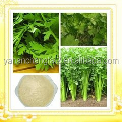 Hot Sale GMP Certificate 100% Pure Natural Butylphthalide