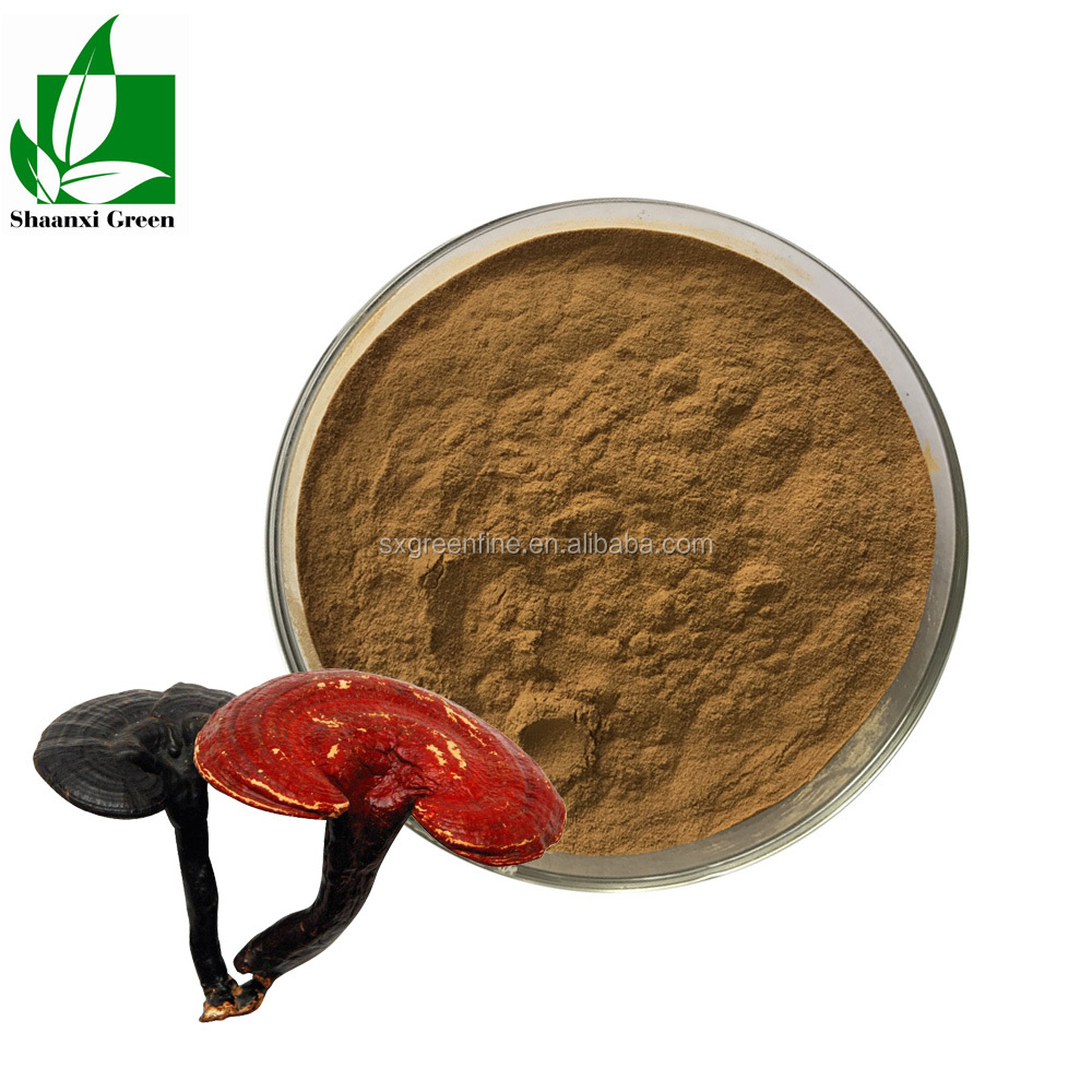 Hot sale Reishi Mushroom extract powder Triterpene