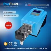 WL600 stepper motor Peristaltic Pump, dosing pump setup