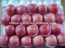 2012 Crop Chinese Fresh Red Star Apple for Exporting ( High Quality and Low Price )