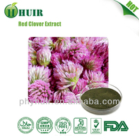 High Purity red clover extract/red clover/Isoflavone
