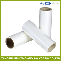 Durable Various Materials plastic film roll of vacuum bag,china manufacture packaging roll film