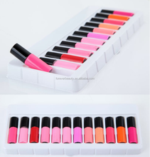 Most popular products 2018 high quality moisturizing makeup rouge lipgloss waterproof 12 pcs colorful matte liquid lipstick set