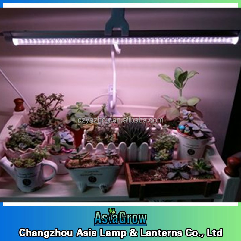 full spectrum light led grow light for plant flowers