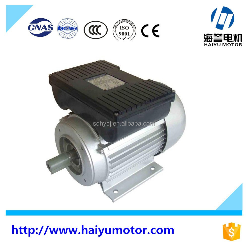 YC YL single phase 220v ac electric motors single phase motor yl8024