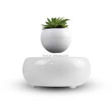 Cheap designer decor Air-layering levitating plant bonsai