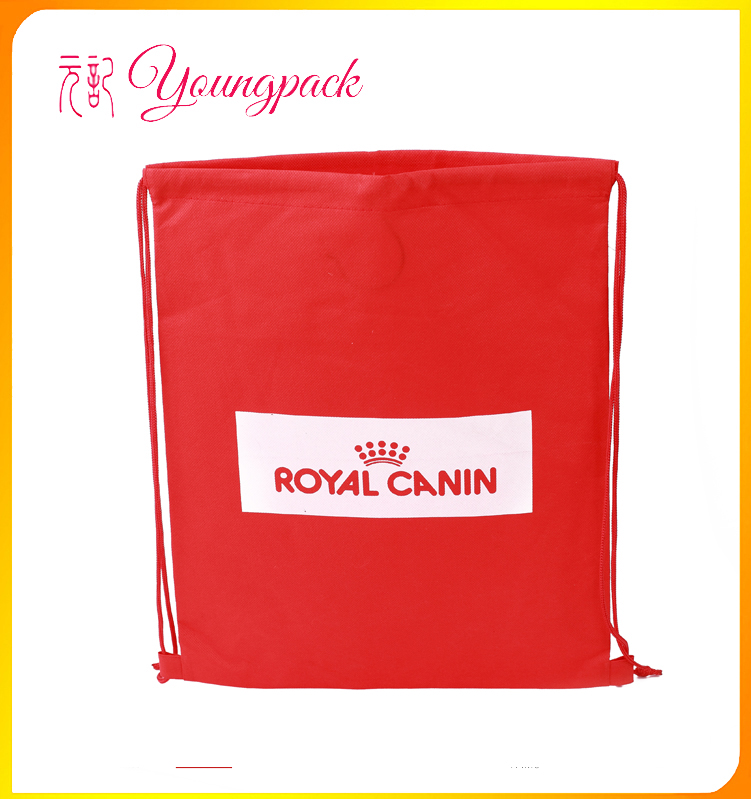OEM high quality canvas drawstring bag for shopping