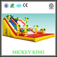 Inflatable in Inflatable Castle,Inflatable Bouncers for sale