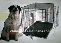 Foldable wire dog cage
