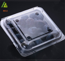 Clear transparent clamshell 150g fruit blister packaging box