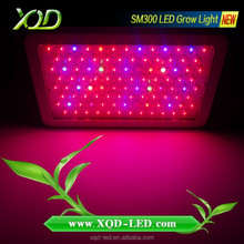 300w led grow lights full spectrum led lighting