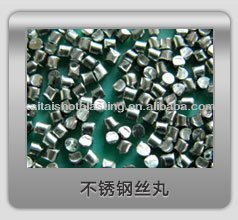 sell stainless steel cut wire shot